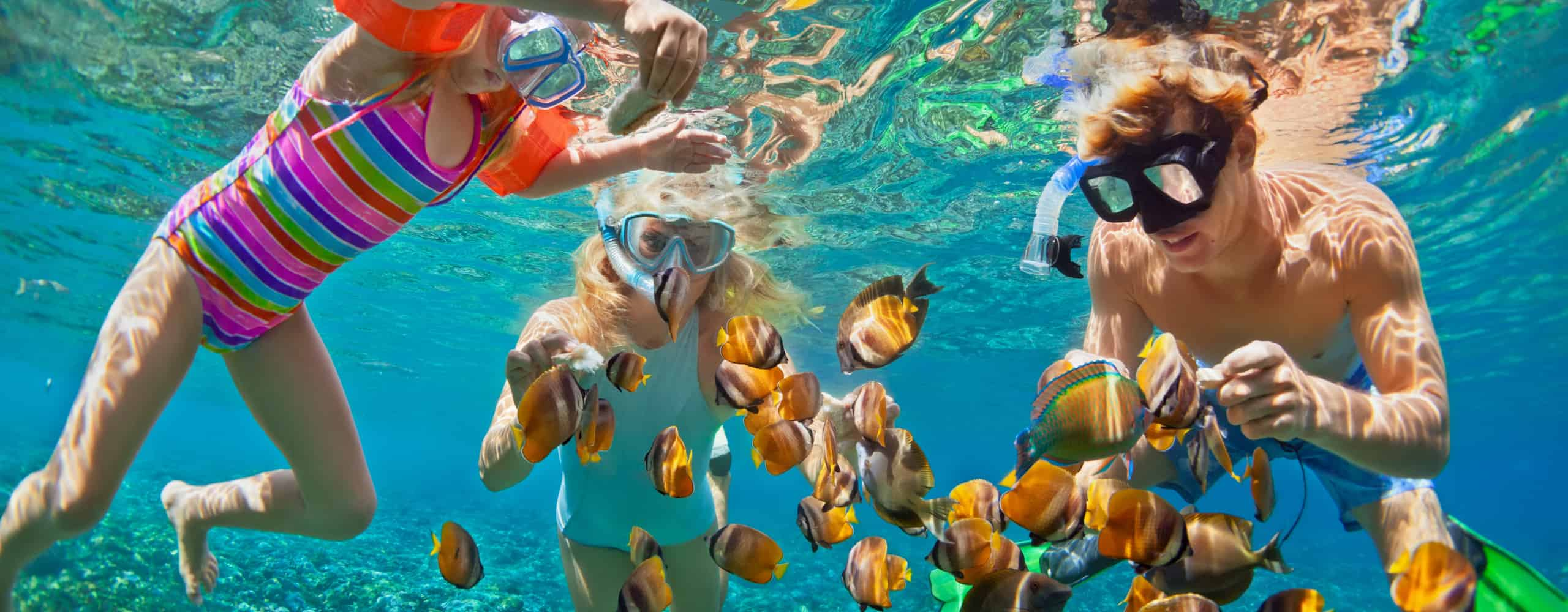 Family Snorkelling, Caribbean